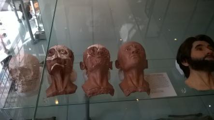 Heads!